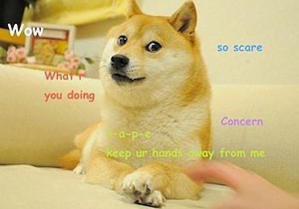 27 6edb53993d Original Doge meme