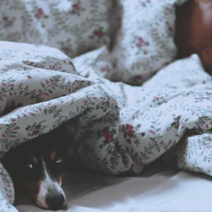 Dit is waarom een slaaptekort kan leiden tot een kernramp