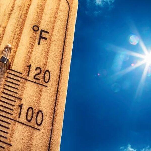 Aankomende week wordt het misschien wel 40 graden