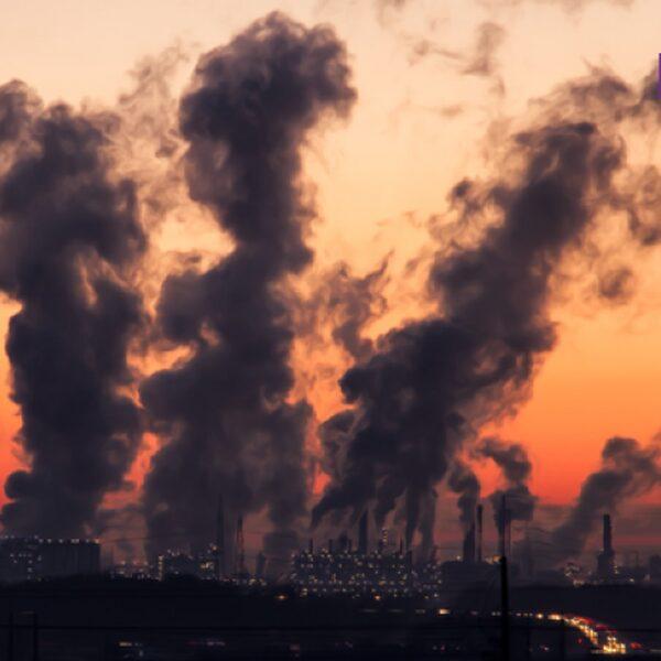 Vergaat de wereld echt als je nu niks doet aan de klimaatcrisis?