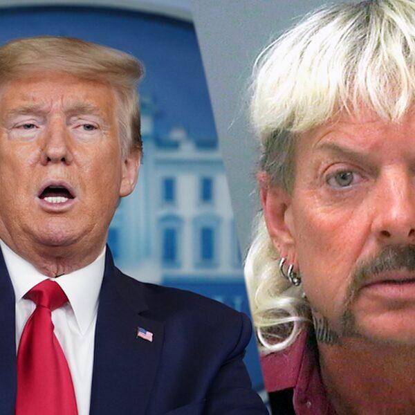 Donald Trump gaat zich buigen over vrijlating Joe Exotic