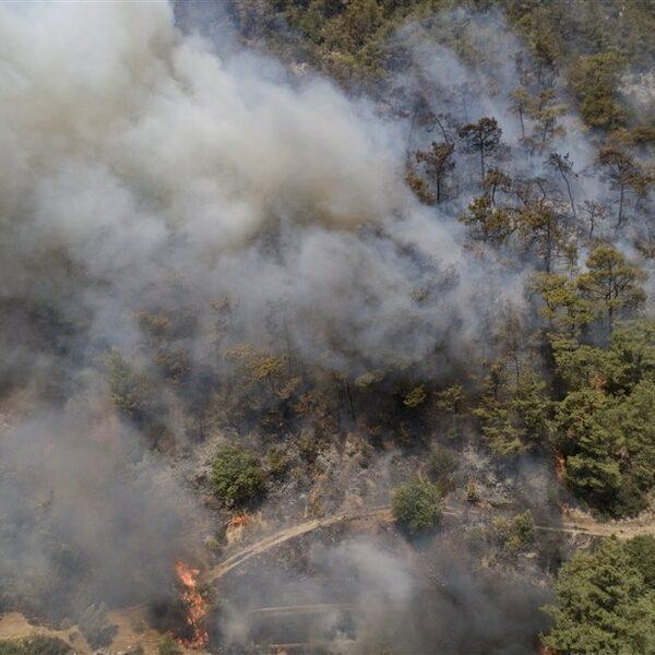 Ernstige bosbranden in Turkije: wat is er aan de hand?