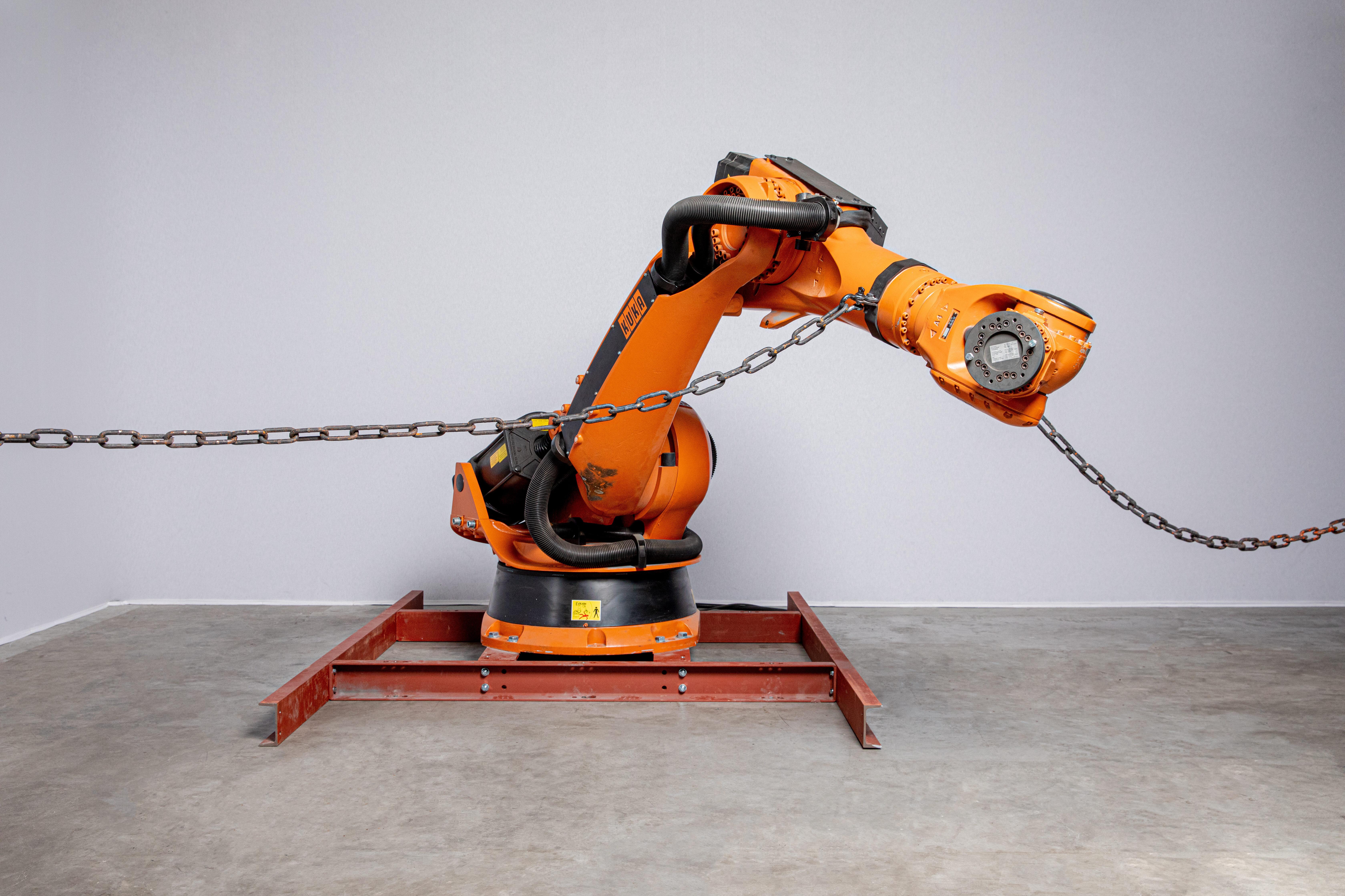 2 Robots in Captivity edited 1
