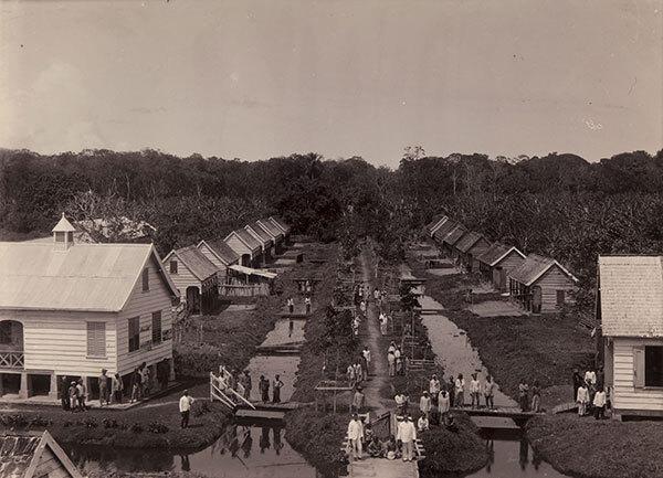 3 Arbeiderswoningen en apotheek op plantage Geijersvlijt Augusta Curiel