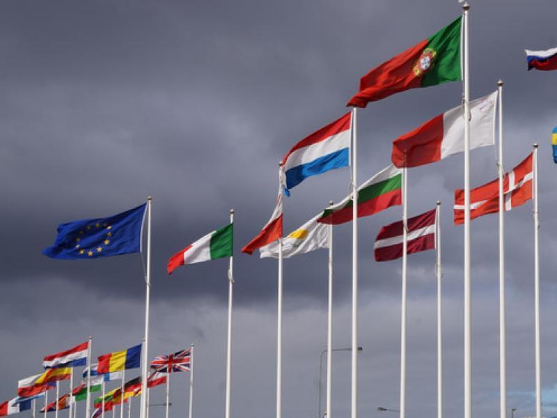 115 Europese Unie vlaggen