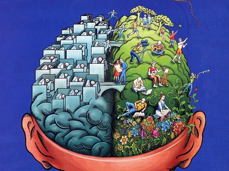 44c Creatief brein