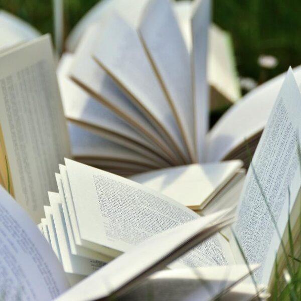 Een boekentip? Deze schrijvers hebben een bijzondere pen