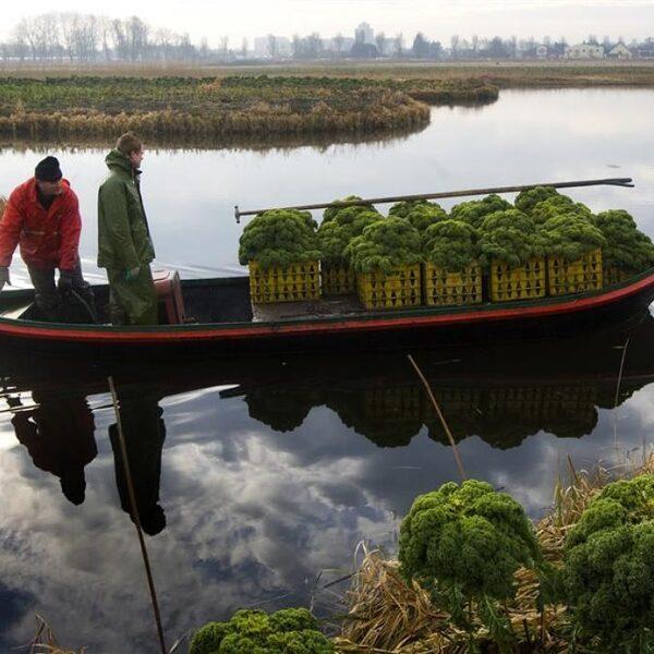 Nederland is een goudmijn voor lekker eten en mooie producten
