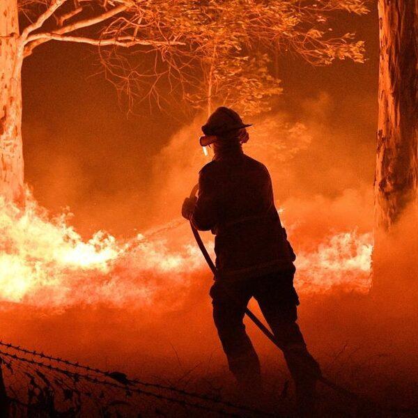 Podcast De Dag: brand bestrijden in Australië 'de adrenaline pompt m'n oren uit'