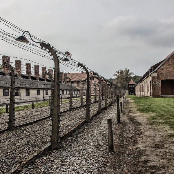 Hoe zorg je dat de overblijfselen van Auschwitz bewaard blijven?