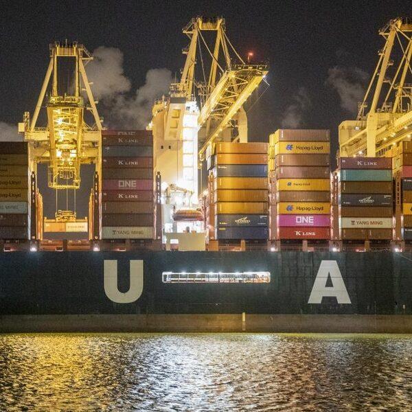 Van losse sinaasappels naar volle containers: hoe georganiseerde misdaad zich ontwikkelde in Rotterdam