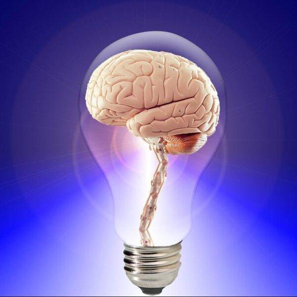 Trucjes van geheugenatleten maken ook langetermijngeheugen beter