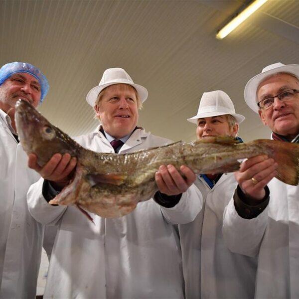 Podcast De Dag: Hoe de visserij een Brexit-struikelblok werd
