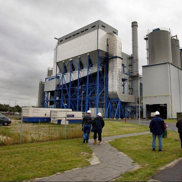 Planbureau: zonder biomassa gaan we de klimaatdoelen waarschijnlijk niet halen