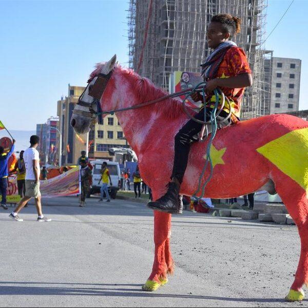Valt Ethiopië uiteen na 'ongrondwettelijke verkiezingen'?