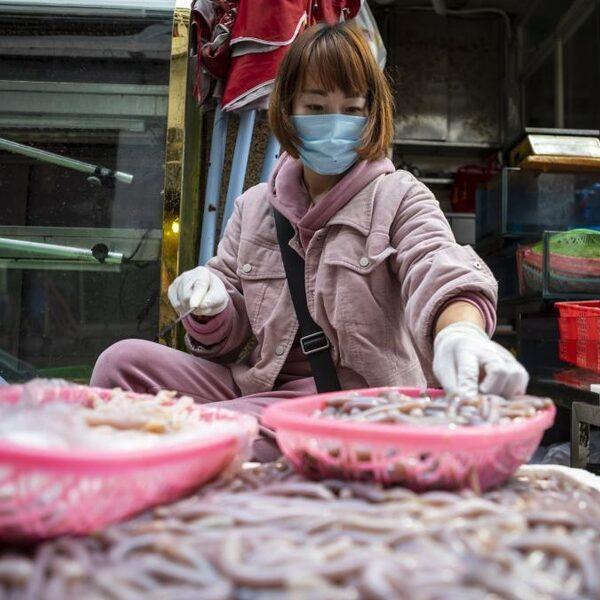 Terug naar de bron: een kijkje op zo'n Chinese markt waar het coronavirus zou zijn ontstaan