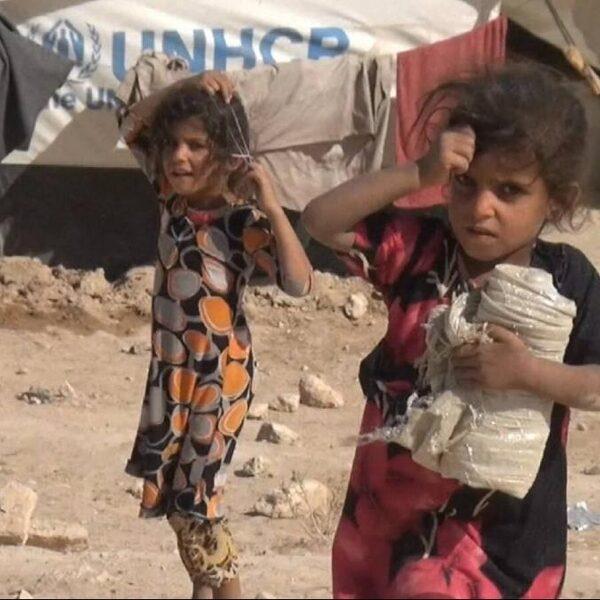 Nederlandse weeskinderen van IS'ers overgedragen in Syrië