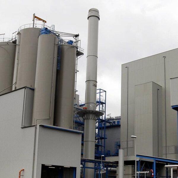 Planbureau: zonder biomassa veel meer windmolens en zonnepanelen