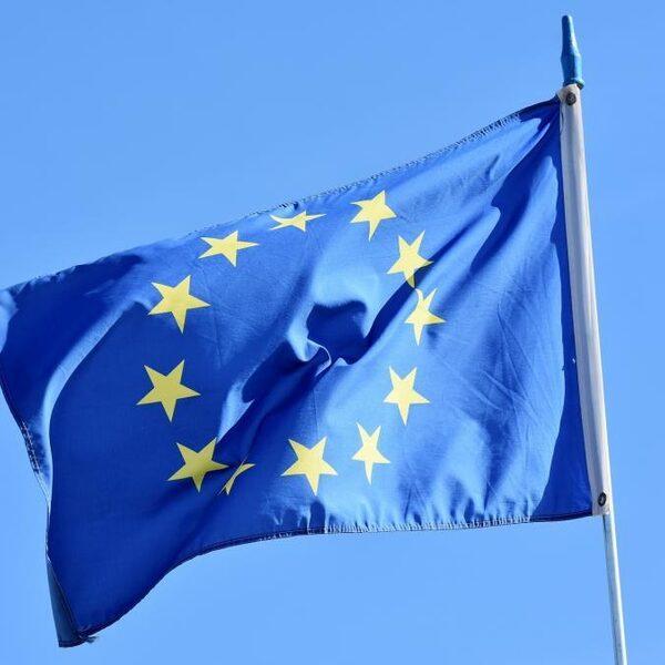 Volt wil Europese regering met Europese ministers