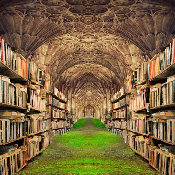 Aanraders: deze non-fictie boeken
