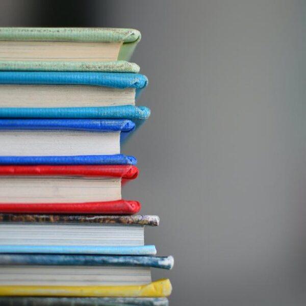 Onderwijsachterstanden: 'Pak nu ook de leescrisis aan'