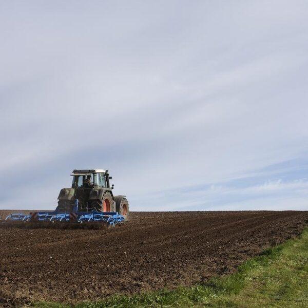 Stikstofoplossing akkerbouw: boeren zonder mest