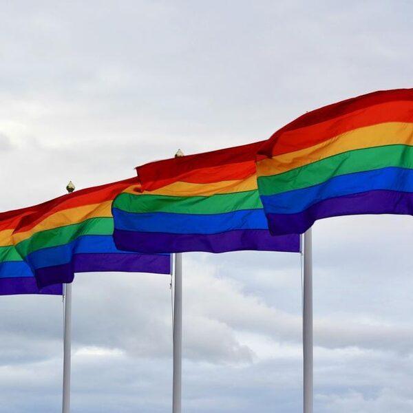 Mounir werd uit huis gezet omdat hij homo is: 'Dit komt aan de lopende band voor'