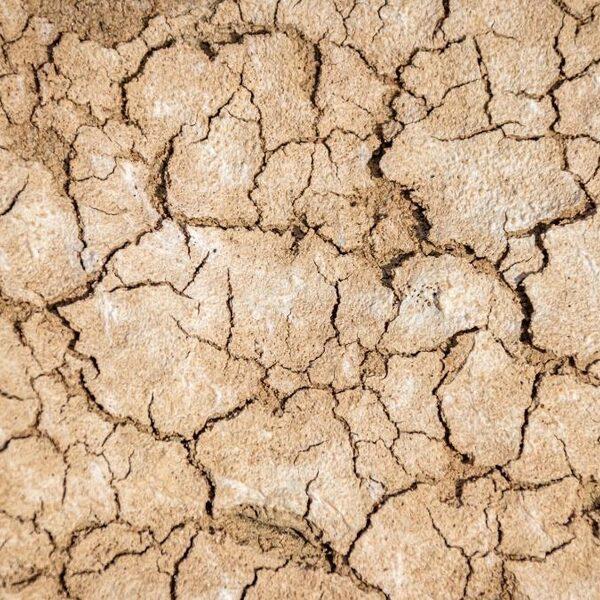 Europese droogtes waren in 2000 jaar niet zo ernstig