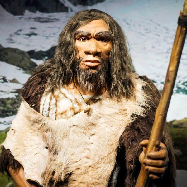 Deze onderzoeker laat de neanderthalers bij bosjes doodgaan