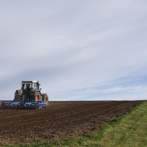 Onze boeren produceren vooral voor export en niet voor 'ons'
