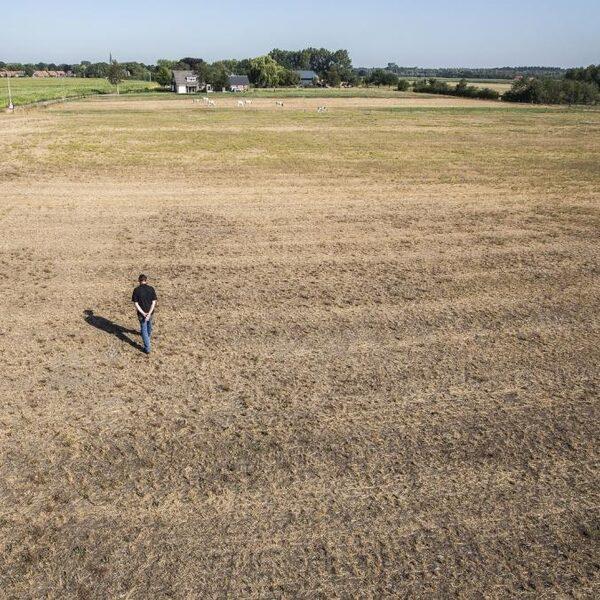 Extreme droogte dreigt Achterhoek en Twente te veranderen in woestijn