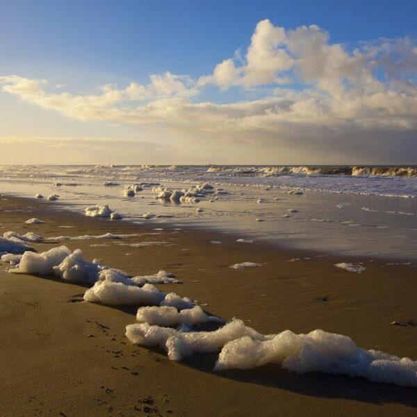 Strandlopen en verzamelen: het zit in ons bloed