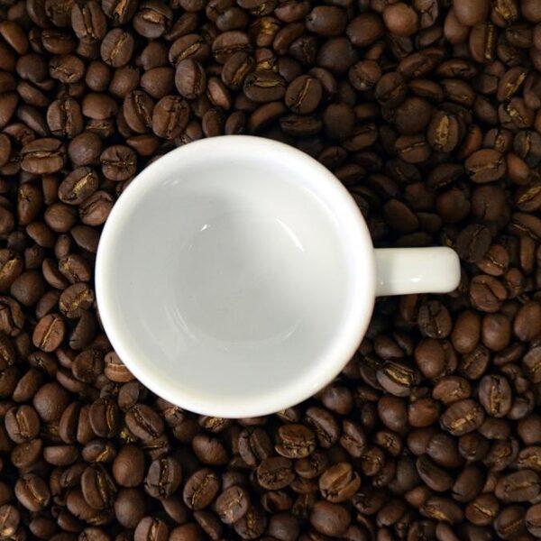 Koffieboeren leven ver onder de armoedegrens: 'Ben jij bereid meer te betalen voor je kopje koffie?'