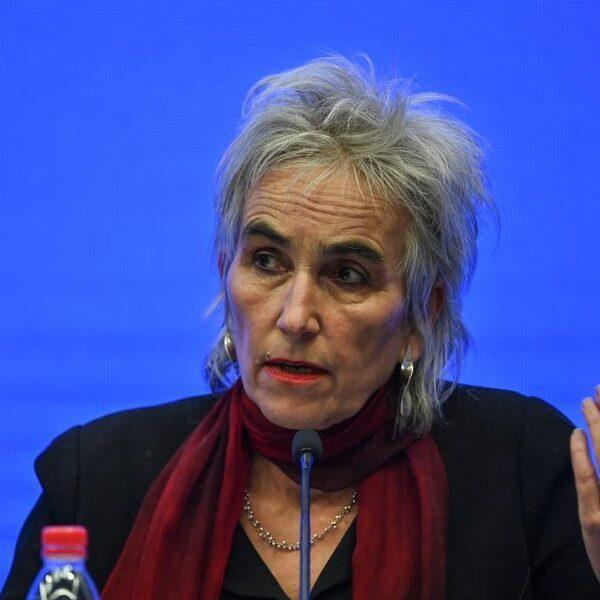 Marion Koopmans: 'COVID-19 mogelijk al 45 jaar oud vleermuizenvirus'