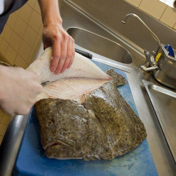 Wat De Boer Schaft op bezoek bij een viskwekerij