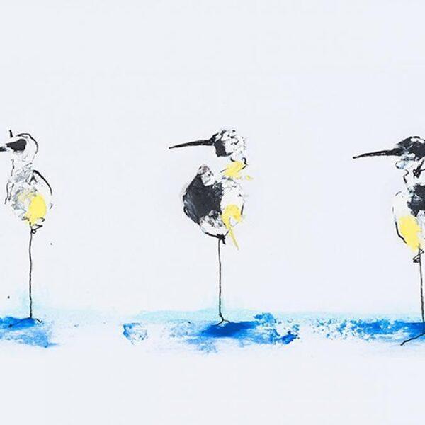 Gids voor niet-bestaande vogels van Europa wakkert jouw fantasie aan