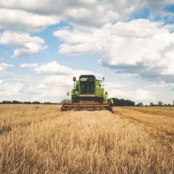 Wat is het effect van mix bestrijdingsmiddelen voor ons voedsel en de bodem?