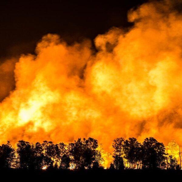 Inwoners Herkenbosch mogen nog niet naar huis, natuurbrand nog niet onder controle