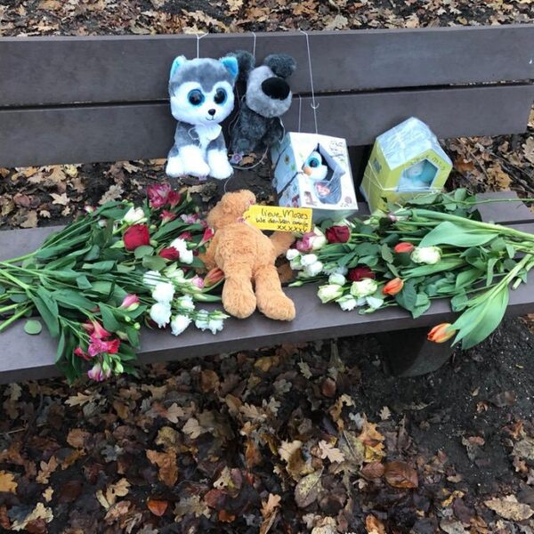 Traumapsychologen: 'Ingewikkelde kindermisbruikzaken onvoldoende onderzocht'