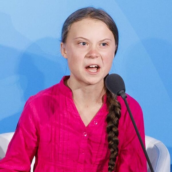 'Greta is de buikspreekpop van nietsontziende volwassenen'