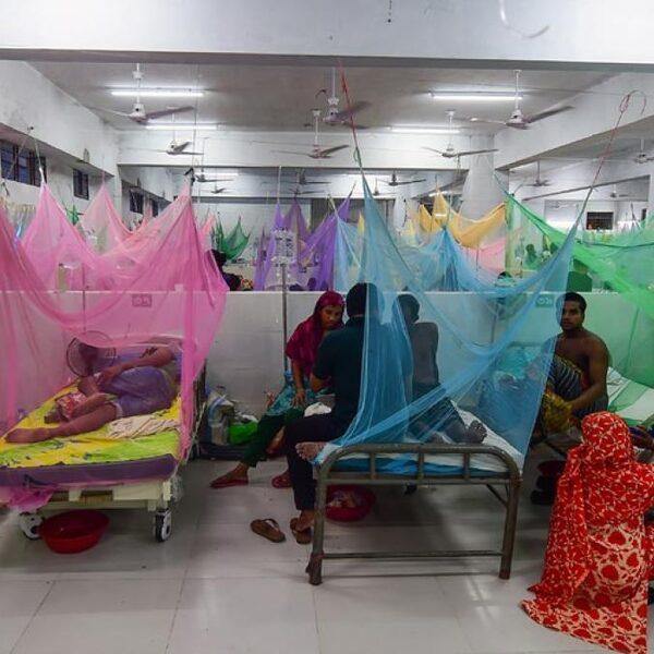 Besmettingsgevaar: dengue-uitbraak eist steeds meer slachtoffers