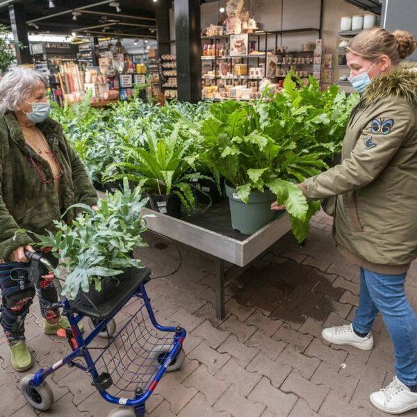 Recordjaar voor tuinbranche, consumenten massaal de tuin in tijdens corona