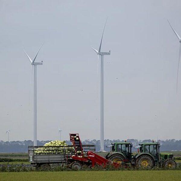 CO2-uitstoot moet verder worden teruggeschroefd: 5 vragen over de nieuwe Europese klimaatwet