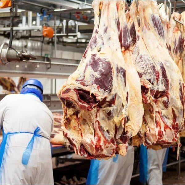 Podcast De Dag: Hoe corona ons dwingt anders naar vlees te kijken
