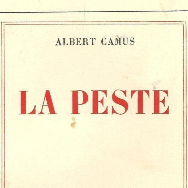 We lezen massaal De Pest van Camus, en terecht