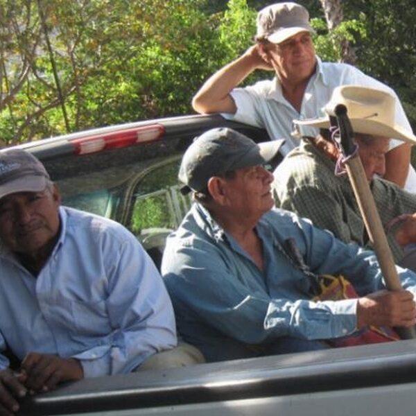 Massagraf in Mexico