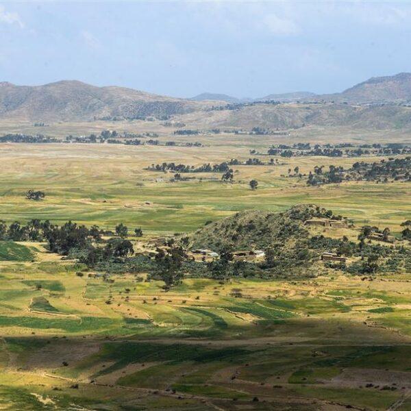 Europa financiert dwangarbeid in Eritrea
