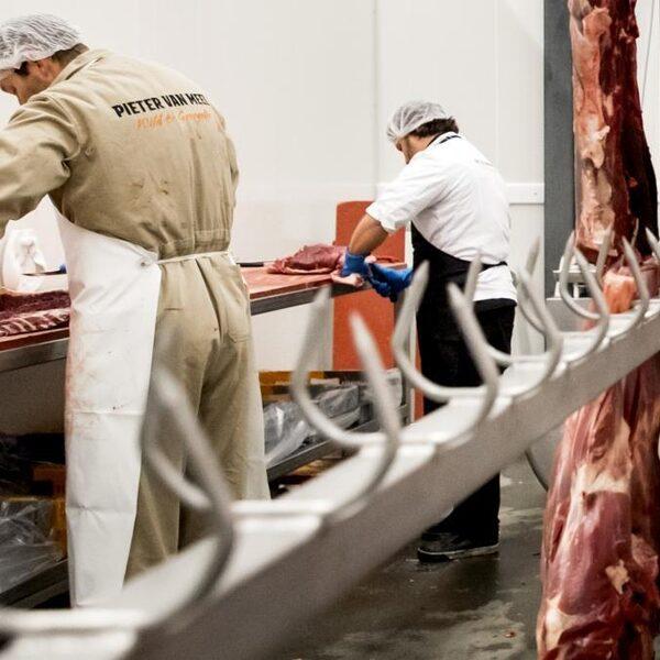 D66 wil opfokverbod: boeren boos