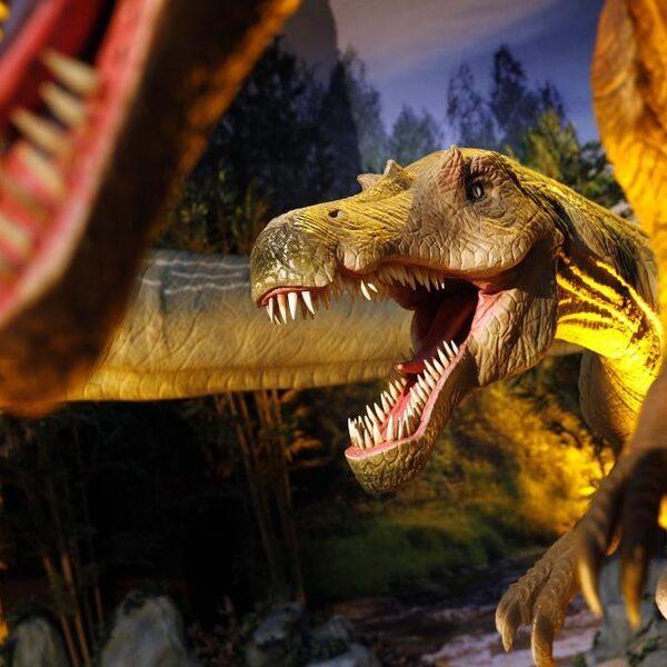 'Van al dat gestamp krijgt de T-Rex zere poten'