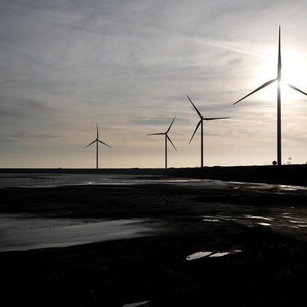 Podcast De Dag: hoe Nederland de achterstand in duurzaamheid aanpakt